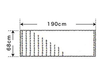 【竹布】 TAKEFU 清布(すがしぬの)ガーゼショール、約68x190cm、若竹