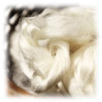 竹布の原綿